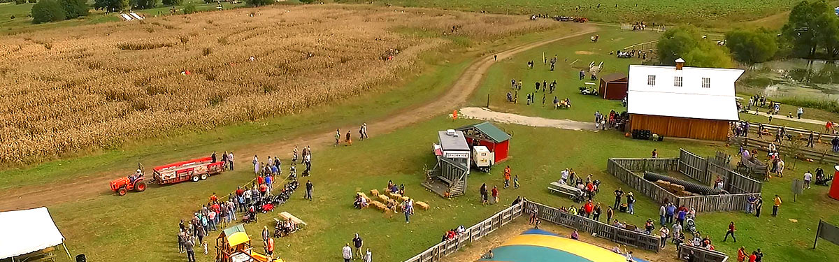 Ciderfest activities: corn maze, pumpkin patch, wagon, fun