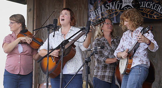 Pheasant Pluckers play live during Ciderfest