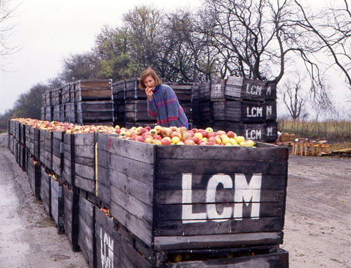 Woman posing in front of dozens of apple crates