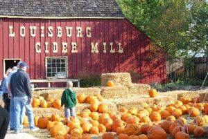 Louisburg Cider Mill Pumpkin patch