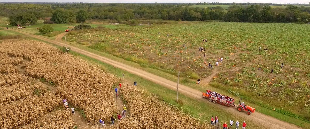 Corn Maze and Pumpkin Patch at Louisburg Cider Mill's annual Ciderfest